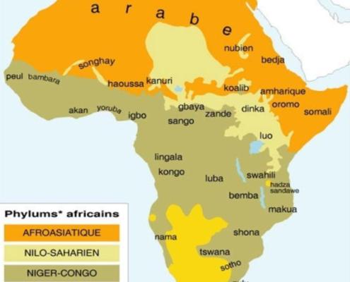 Langues parlée en Afrique