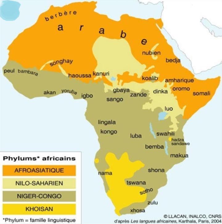 Importance des soins sur cheveux afro